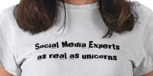 social_media_experts_as_real_as_unicorns_tsh